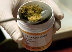 A Palermo ci si può curare con la cannabis