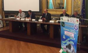 """Differenziata, Romano: """"In Sicilia alti costi e raccolta al 13%"""""""
