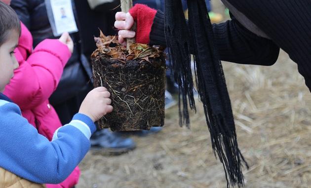 Festa dell'albero 2018 dedicata all'accoglienza e alla solidarietà